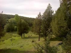 Prados cercanos al río Caslilla