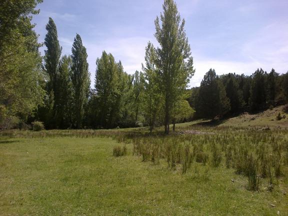 Praderas próximas al río Caslilla, Segovia-04