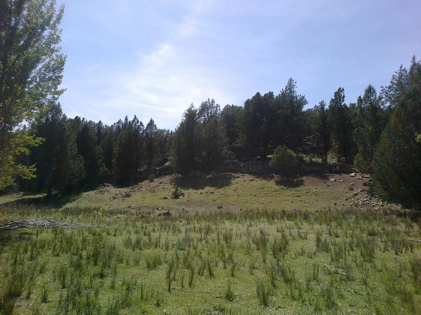Praderas próximas al río Caslilla, Segovia-05