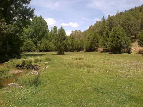 Praderas próximas al río Caslilla, Segovia-09