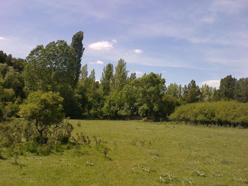 Caslilla-River-3-6-2014-124s