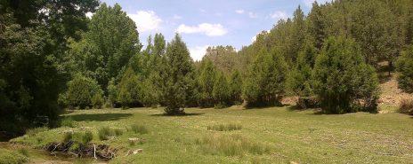 Praderas próximas al río Caslilla, Segovia
