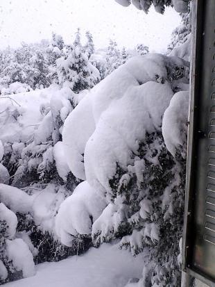 Monte de Los Cortos. Nevada del 6-2-2018-02