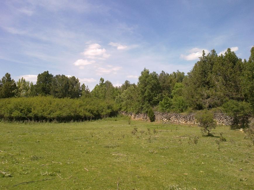 Caslilla-River-3-6-2014-125s