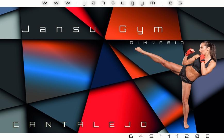 Gimnasio-Jansu-1b