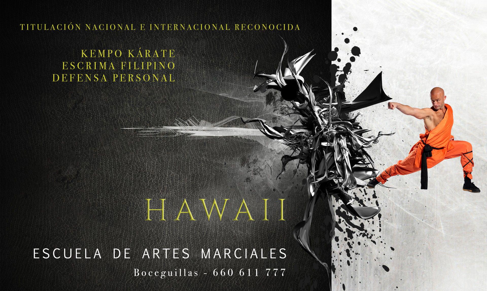 Hawaii-Artes-Marciales-1b