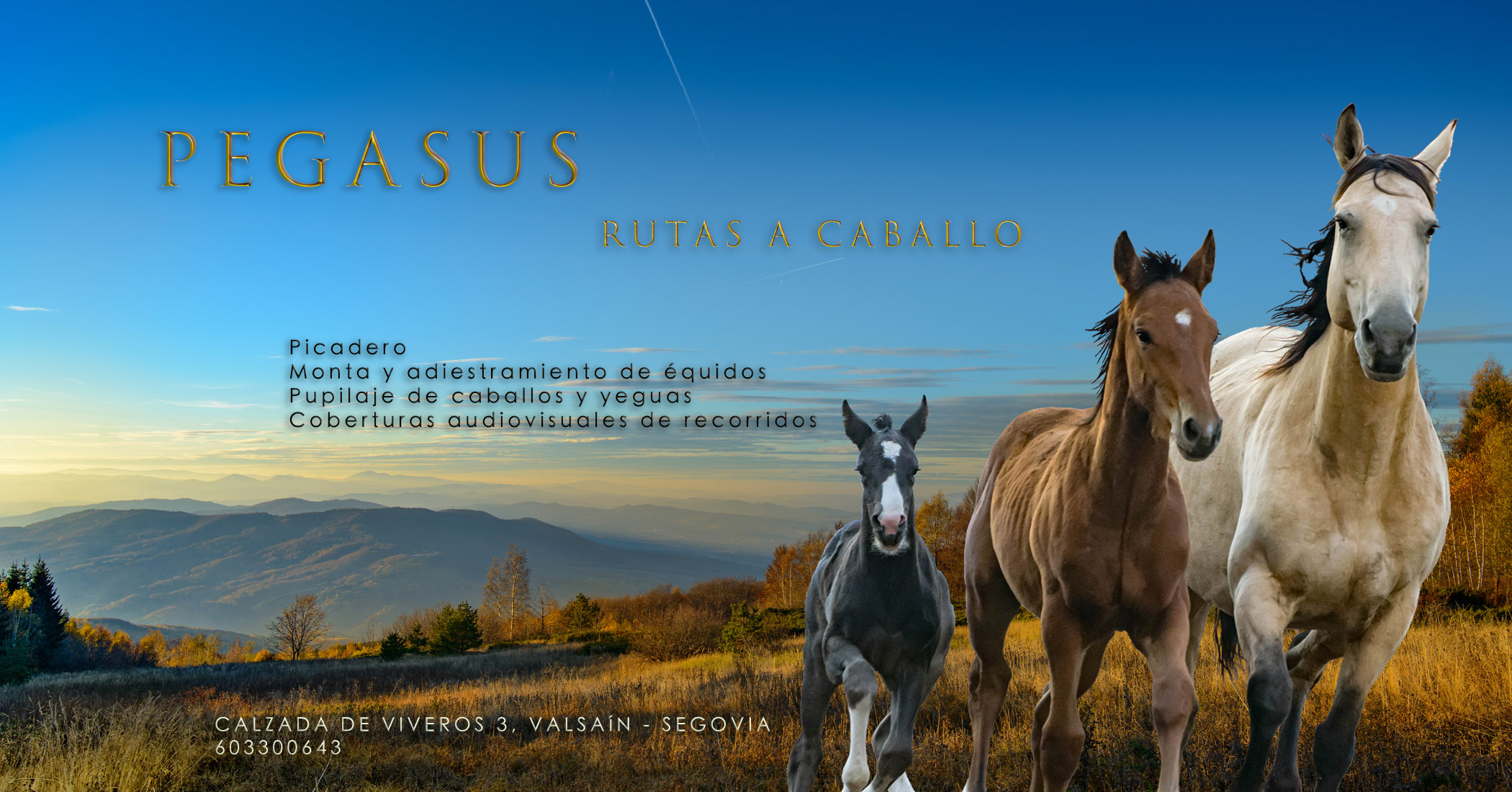Alquiler de caballos-5b