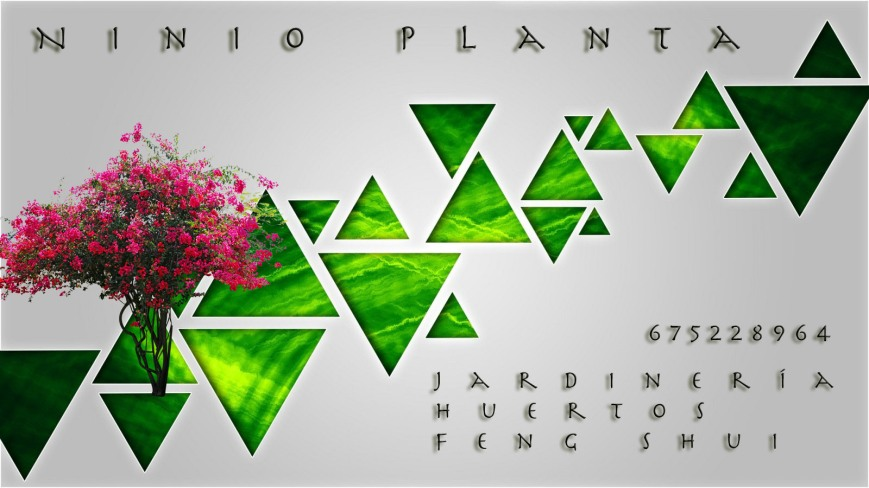 Ninio-Planta-postcard-HD-02